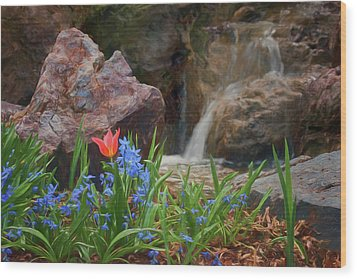 Wood Print featuring the photograph Spring  by Nikolyn McDonald