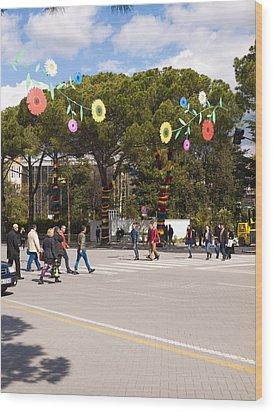 Spring On Deshmoret E Kombit Boulevard Wood Print by Rae Tucker