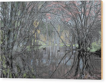 Spring On The Backwater Wood Print