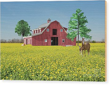 Spring On The Farm Wood Print by Bonnie Barry