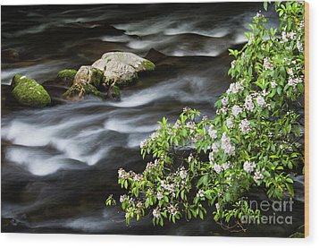 Wood Print featuring the photograph Spring On The Oconaluftee River - D009923 by Daniel Dempster