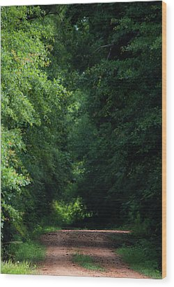 Wood Print featuring the photograph Spring Path Of Light by Shelby Young