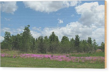 Wood Print featuring the photograph Spring Phlox by Peg Urban