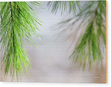 Wood Print featuring the photograph Spring Pine Abstract by Christina Rollo