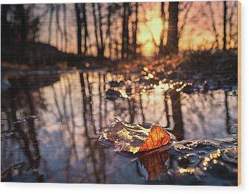 Spring Puddles Wood Print