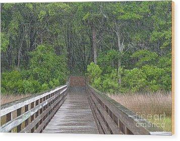 Wood Print featuring the photograph Spring Rain by Carol  Bradley
