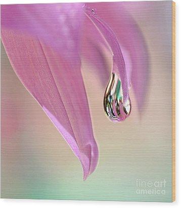 Spring Raindrop By Kaye Menner Wood Print