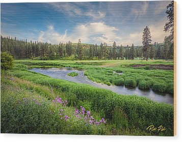Wood Print featuring the photograph Spring River Valley by Rikk Flohr