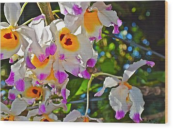 Spring Show 15 Brazilian Orchid Wood Print