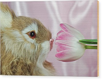 Spring Sniffer Wood Print by Maria Dryfhout