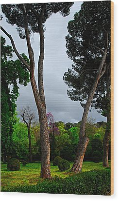 Spring Storm Over Park Retiro Wood Print by Georgia Nick