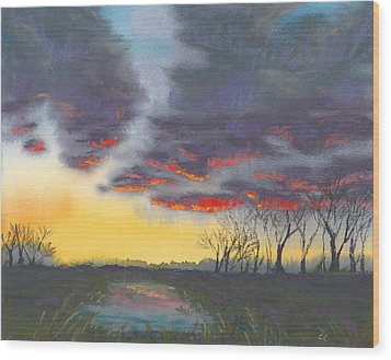Spring Sunset Wood Print by Christine Camp