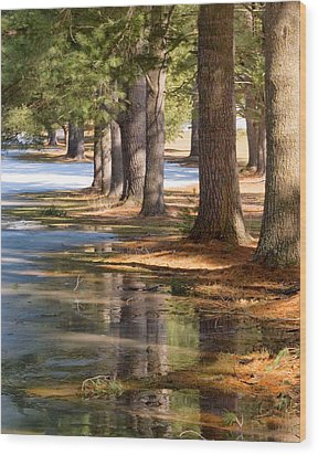 Spring Thaw  Wood Print by Betty  Pauwels