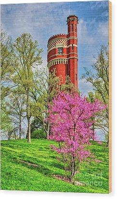 Spring Time At Cincinnati's Eden Park Wood Print by Mel Steinhauer