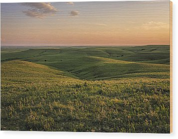 Spring Time On The Prairie Wood Print by Scott Bean