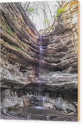 Wood Print featuring the painting Spring Trickling In by Darren Robinson