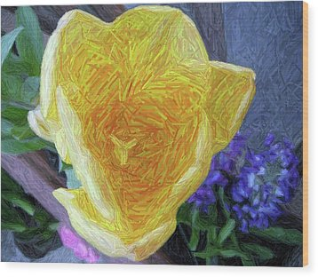 Wood Print featuring the photograph Spring Tulip by Susan Carella