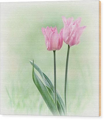 Wood Print featuring the photograph Spring Tulips by Angie Vogel