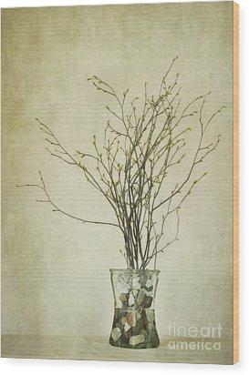 Spring Unfolds Wood Print by Priska Wettstein