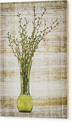 Spring Vase Wood Print by Elena Elisseeva