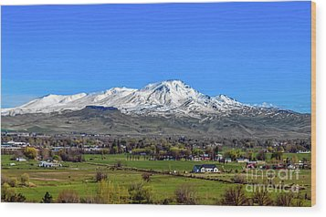 Wood Print featuring the photograph Spring View Of Squaw Butte by Robert Bales