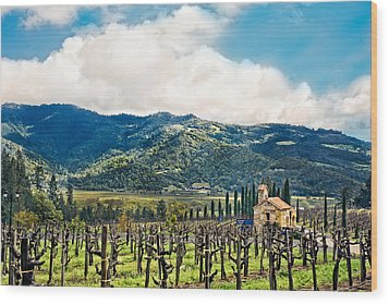 Wood Print featuring the photograph Spring Vines by Kim Wilson