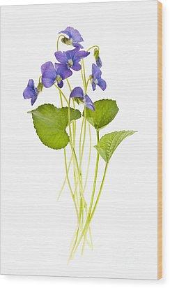 Spring Violets On White Wood Print by Elena Elisseeva