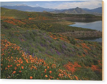 Wood Print featuring the photograph Spring Wildflowers At Diamond Lake In California by Jetson Nguyen