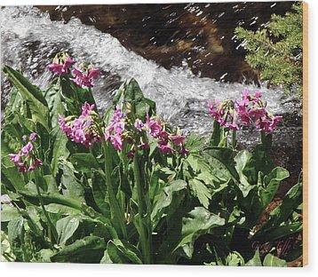 Springflowers Wood Print by George Tuffy