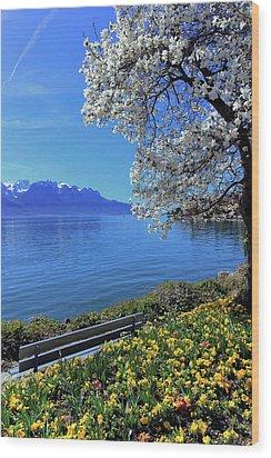Springtime At Geneva Or Leman Lake, Montreux, Switzerland Wood Print by Elenarts - Elena Duvernay photo