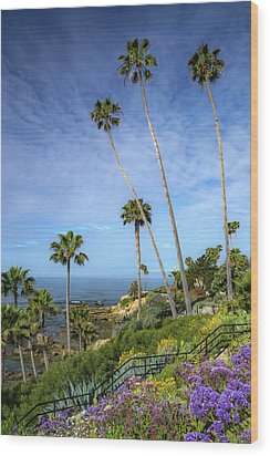 Wood Print featuring the photograph Springtime At Heisler Park by Cliff Wassmann