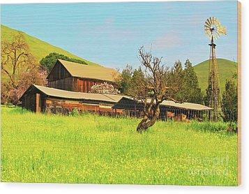 Springtime Barn San Francisco Bay Wood Print by Gus McCrea