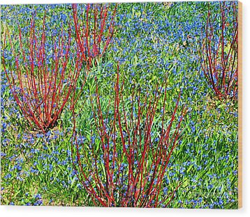 Wood Print featuring the photograph Springtime Impression by Ann Horn