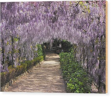 Springtime In Florence Wood Print by Gerald Hiam