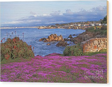 Springtime In Pacific Grove Wood Print