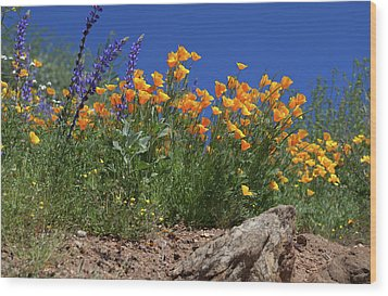 Wood Print featuring the photograph Springtime In Southern California by Cliff Wassmann