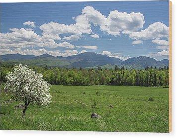 Springtime In Sugar Hill Wood Print