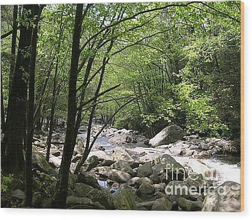 Springtime In The Smoky Mountains Wood Print by Barb Montanye Meseroll