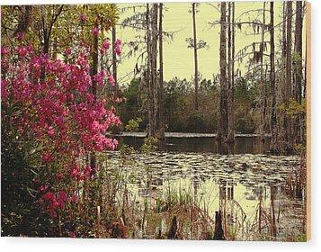 Springtime In The Swamp Wood Print by Susanne Van Hulst