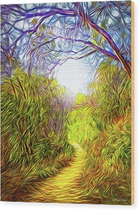 Springtime Pathway Discoveries Wood Print