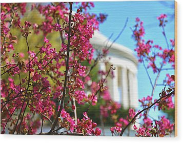 Wood Print featuring the photograph Springtime Vibe by Mitch Cat