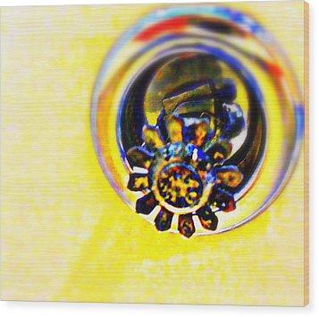 Sprinkler Wood Print by Randall Weidner