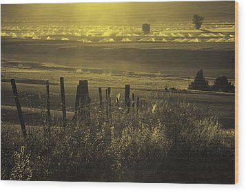 Sprinklers At Sunrise In The Wallowa Valley Wood Print by Alvin Kroon