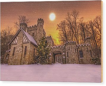Squires Castle In The Winter Wood Print