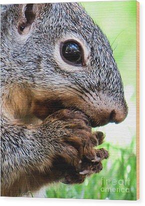 Squirrel 3 Wood Print
