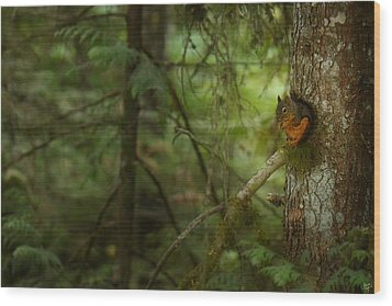 Wood Print featuring the photograph Squirrel Breaks The Silence by Lisa Knechtel