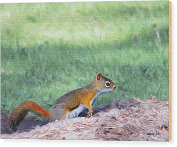 Squirrel In The Park Wood Print by Jeff Kolker