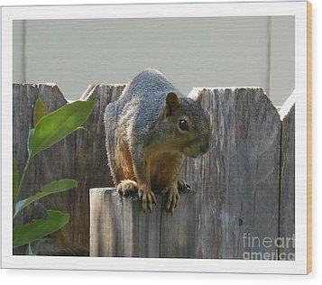 Squirrel On Post Wood Print by Felipe Adan Lerma