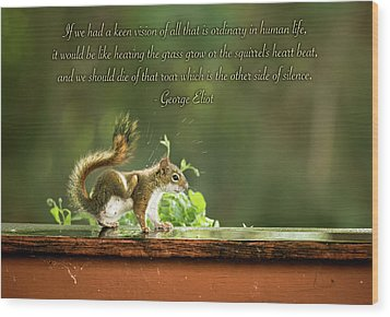 Squirrel's Heart Beat-george Eliot Wood Print by Onyonet  Photo Studios