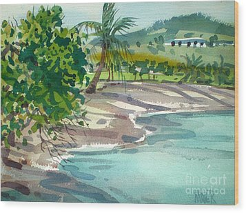 St. Croix Beach Wood Print by Donald Maier